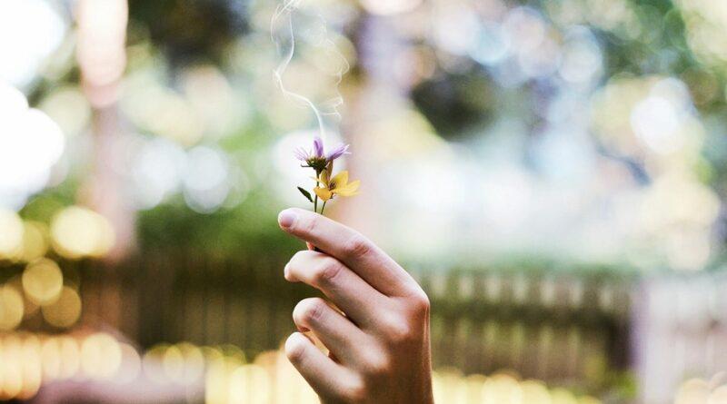 bylinky proti kouření