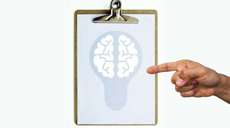 vývoj mozku
