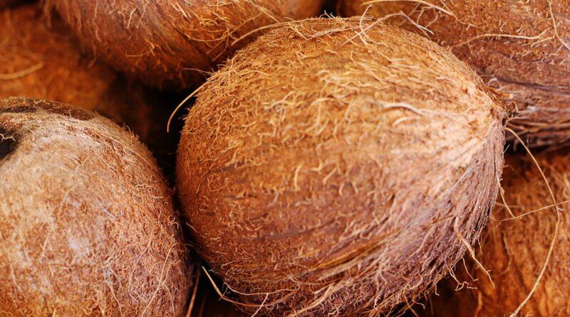 kokos zdraví