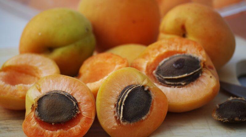 meruňky zdraví